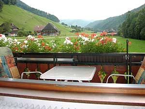 vacation apartment house Ebner Muenstertal black forest germany